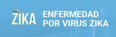 Enfermedad por virus zika
